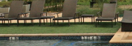 Synthetic turf for pets and backyard